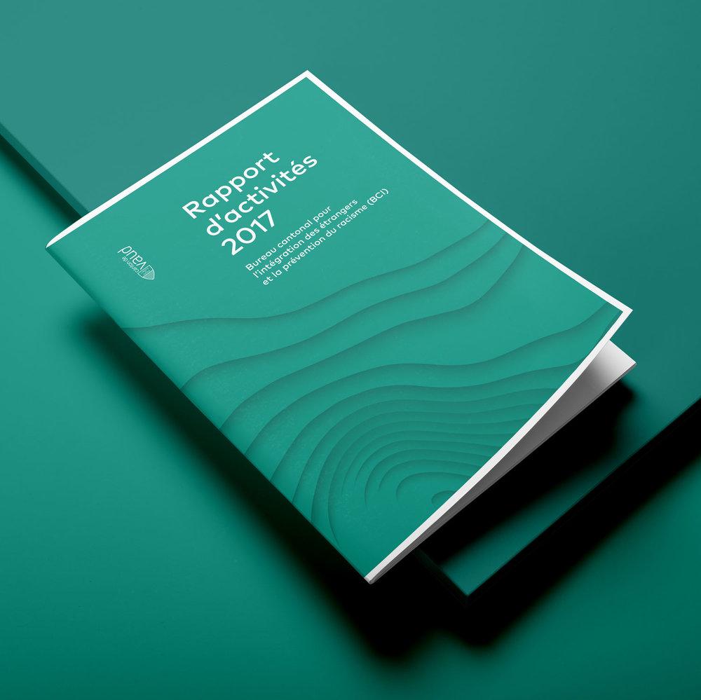 Mashka_BCI_Brochure-Rapport_Annuel_2017_01_WEB.jpg