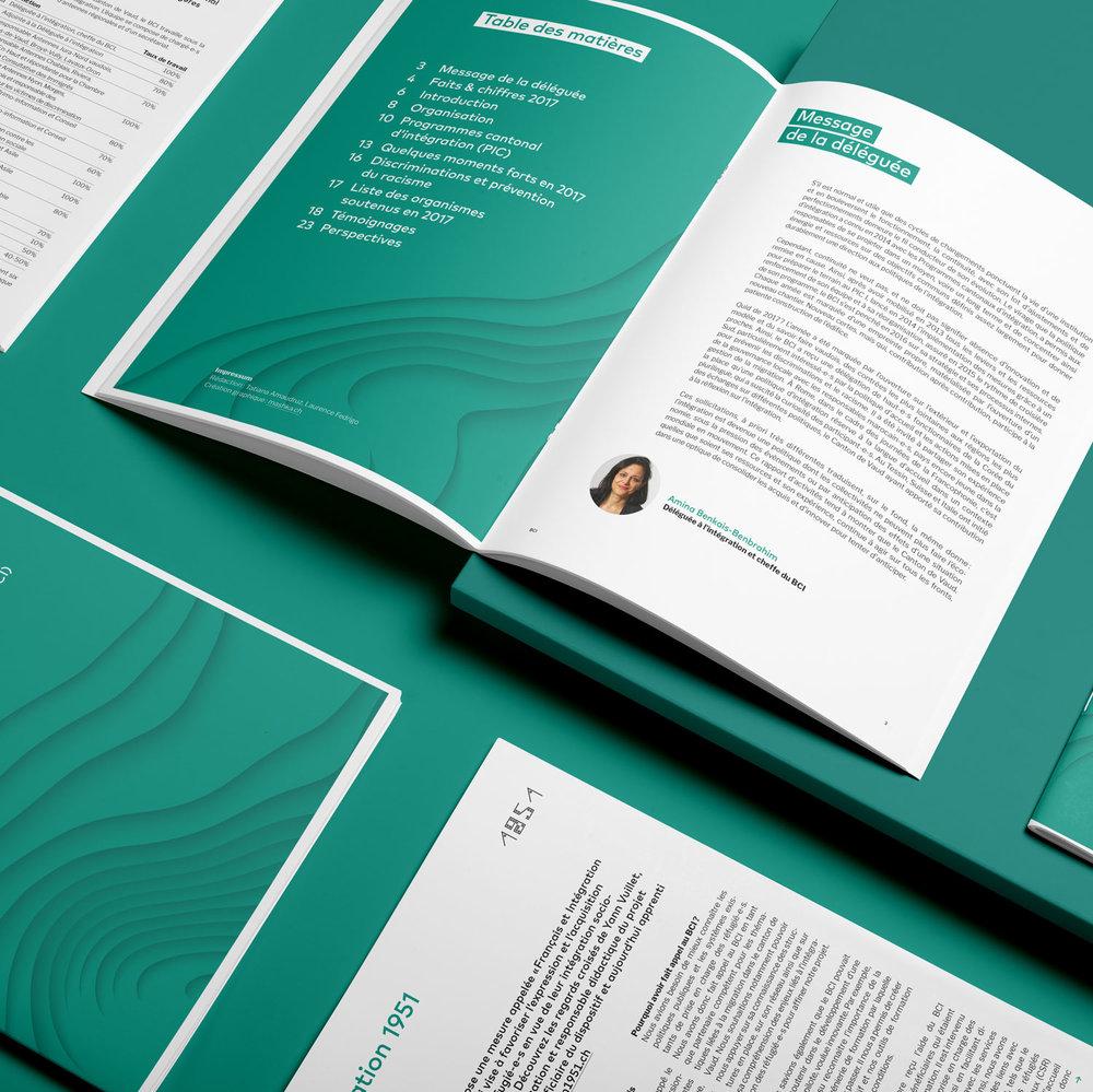 Mashka_BCI_Brochure-Rapport_Annuel_2017_02_WEB.jpg