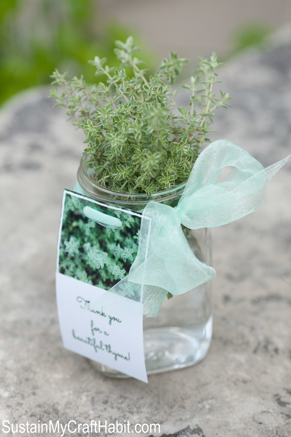 "Fresh thyme in a Mason jar gift idea.  Five festive and patriotic red and white craft ideas to help celebrate Canada Day. From garlands, Mason jars, garden d�cor and food, you'll find creative and inspiring ideas in this roundup that will have you singing ""Oh Canada"" in no time. Include a bonus hostess gift idea and printable."