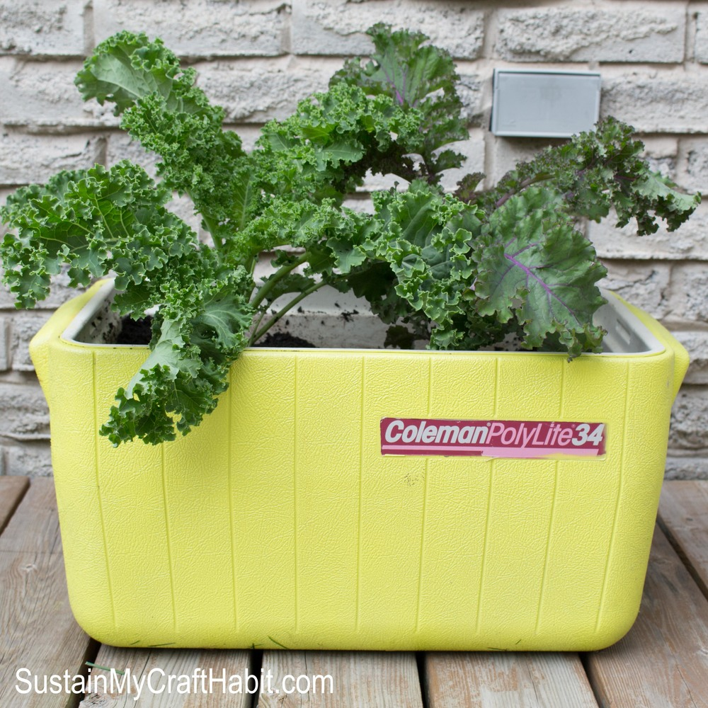 DIY Repurposed Cooler Planter. Upcycle and repurpose and old cooler into something functional: a little garden for your porch. Follow the tutorial for this simple weekend project. SUSTAIN MY CRAFT HABIT