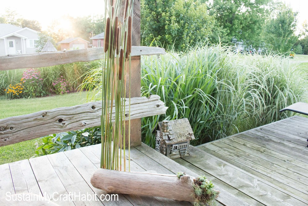 Driftwood, cattails and succulent porch decor- SustainMyCraftHabit.com