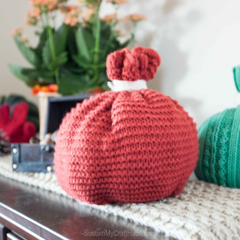 Toque pumpkins and mitten turkey  - SustainMyCraftHabit-8875.jpg