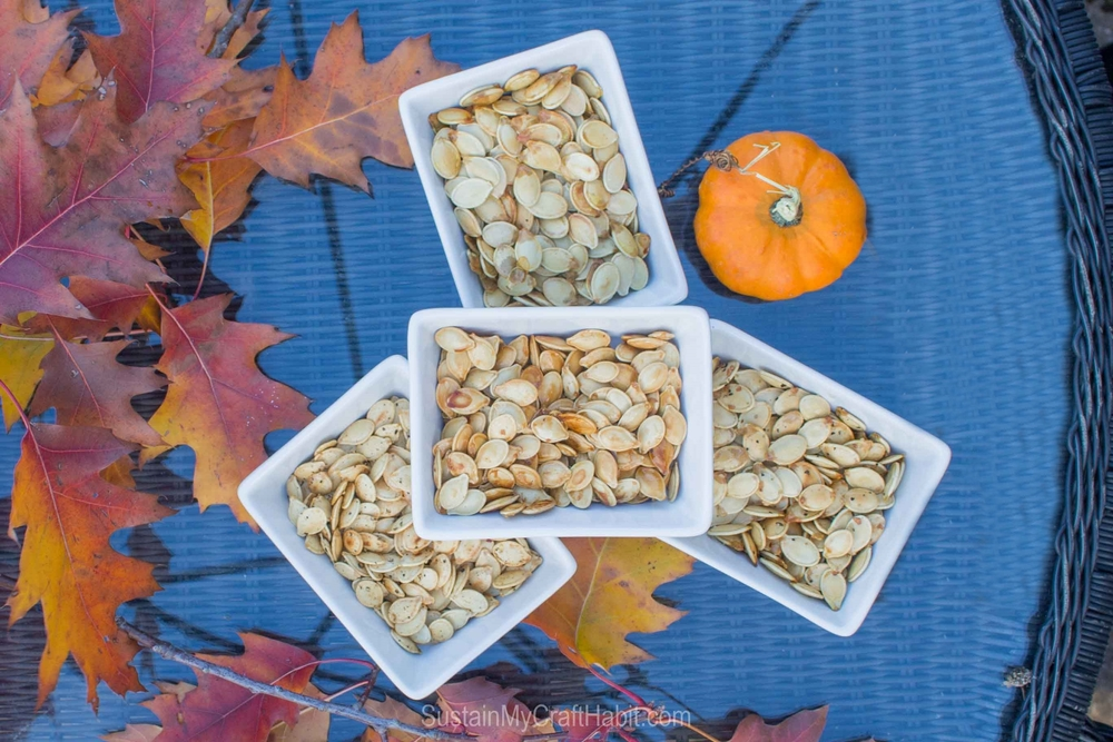 Roasted pumpkin seeds four easy ways including lightly salted, Montreal steak spice, ginger and pepper and Maple Syrup for a delicious and nutrient-packed vegan, gluten-free and paleo snack.
