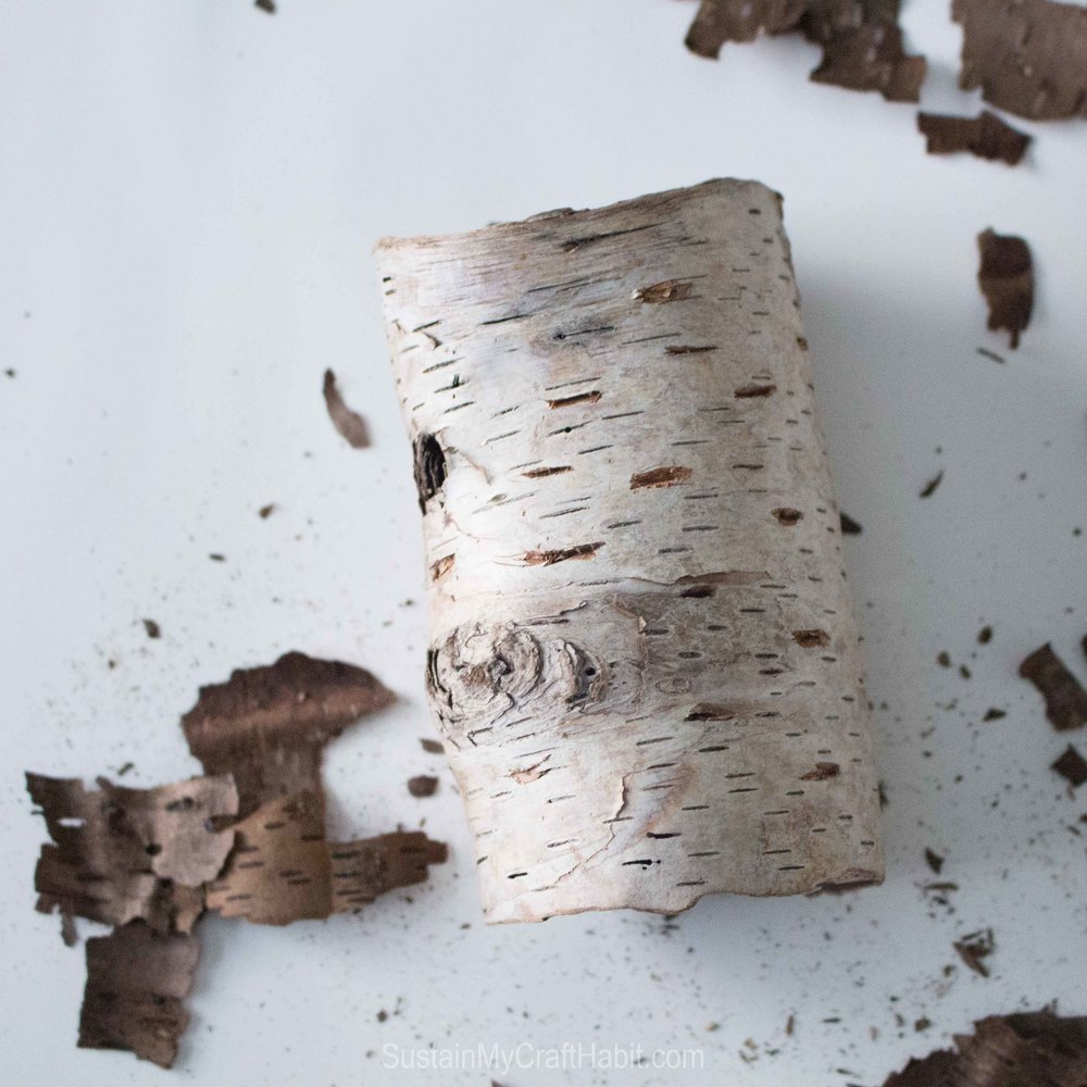 Nature-made lighting decor - beach found birch bark votive holder - SustainMyCraftHabit-6685.jpg
