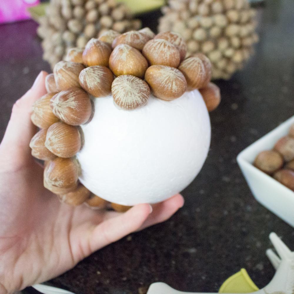 Decorative hazelnut balls-2627.JPG