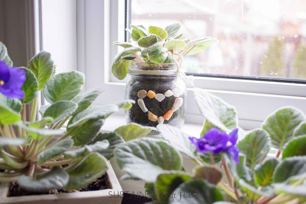 Upcycle a small mason jar into a planter for a delicate flower such as an African Violet. Add a simple DIY pebble heart for an earthy and light new home for your violet to shine in. And learn how to propagate your own violets!