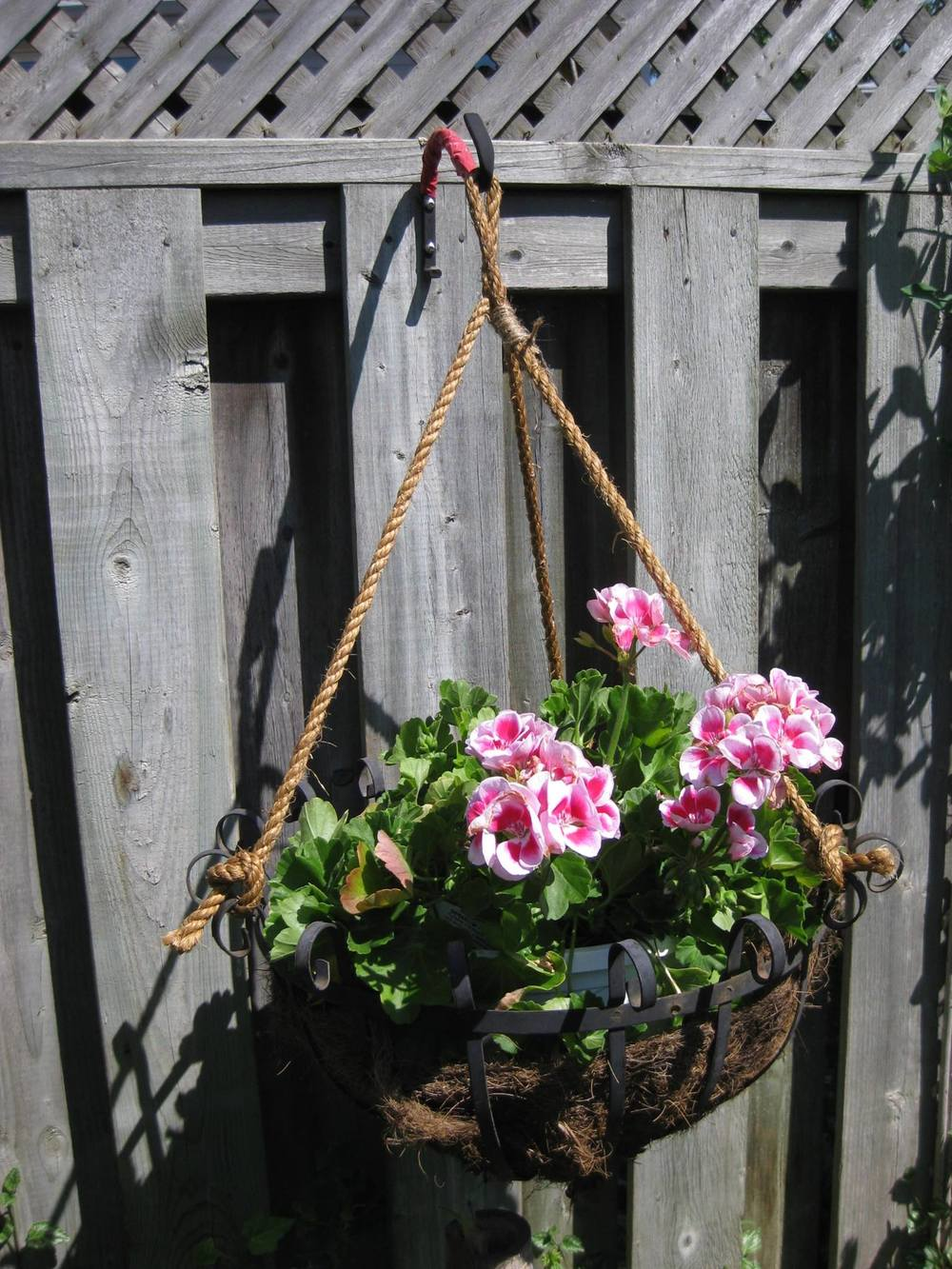 Rope hanging planter basket by Charlotte Howes