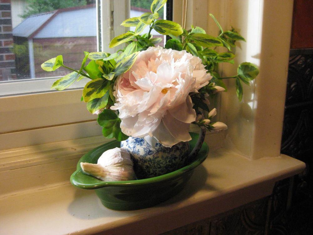 Peonies in a jar Charlotte Howe.jpg