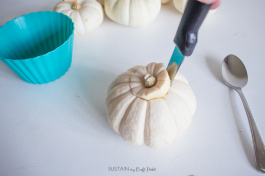 Inexpensive DIY Fresh Fall Centerpiece with Pumpkins-6625.jpg
