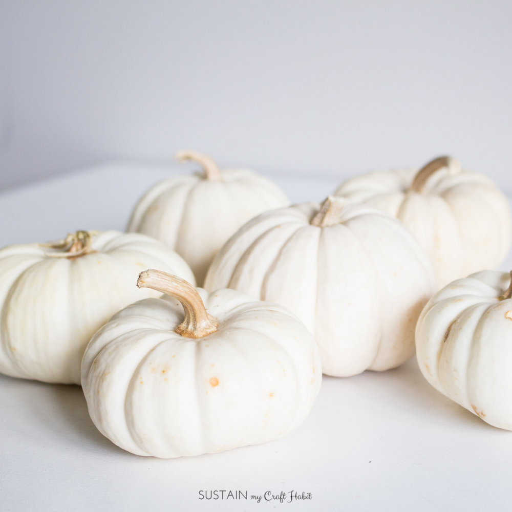 These little ghost pumpkins are the perfect vessel for a simple fall centerpiece.