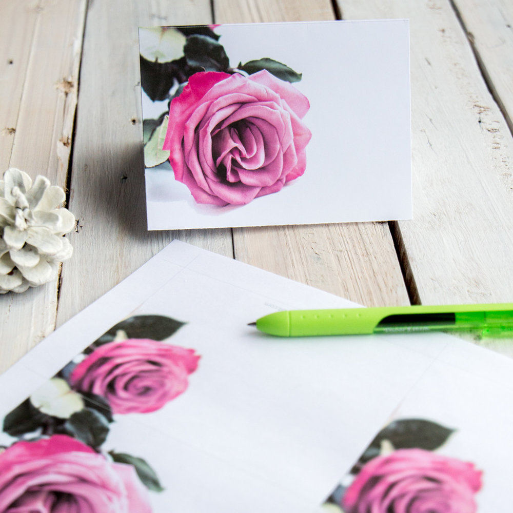 February floral greeting card roses - Sustain My Craft Habit-4759-2.jpg