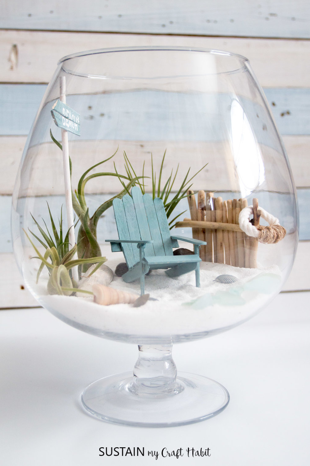 DIY air plant mini garden. What a fun way to display air plants - send them to the beach! Adorable coastal fairy garden idea.