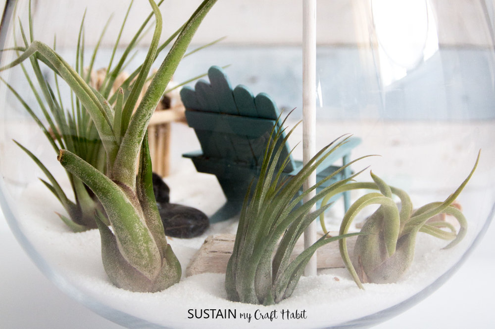 Create a beachy mini garden for your air plants. Includes tutorial to make mini-furniture and accessories. The perfect home for any coastal-loving fairy!