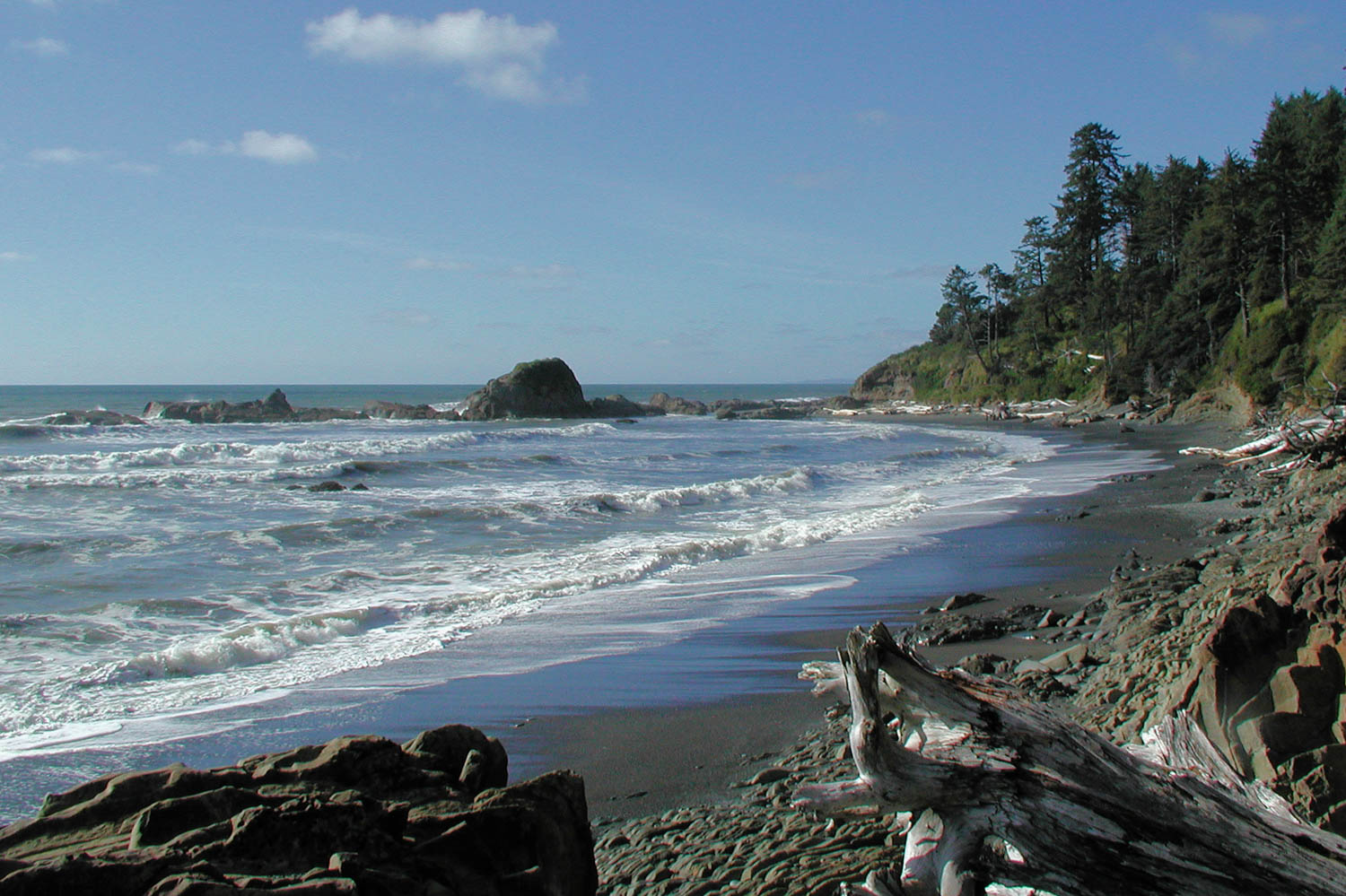 Washington Coastline Olympia National Park
