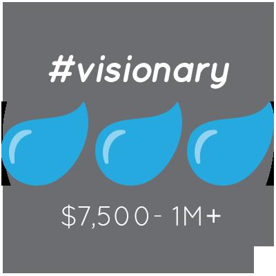 #visionary