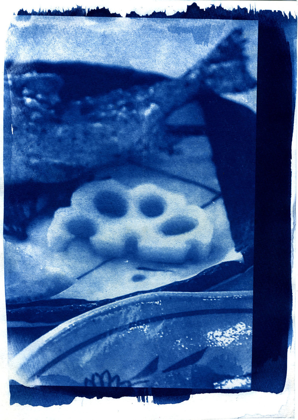 ARRcyanotype_fish272res.jpg