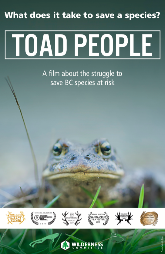Toad-Bristol-Poster.png