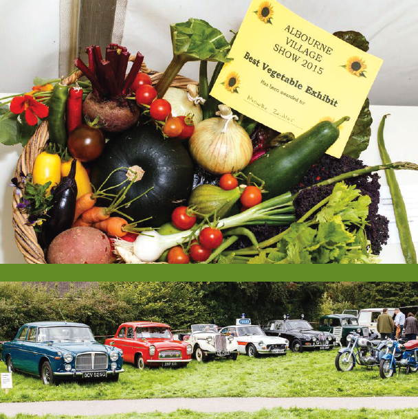 Albourne Village Show 2017 - 9th September 2017