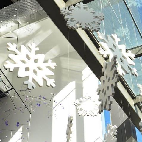 snowflakes3.jpg