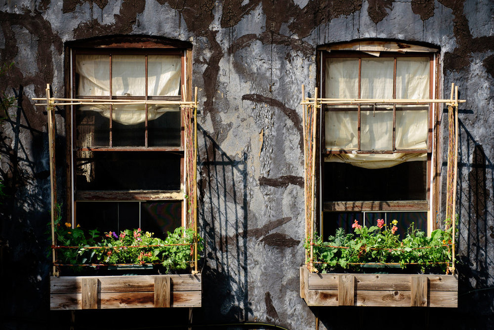 urban-gardening-window-box
