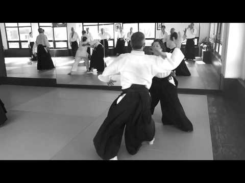Aikido Of Westchester Aikido Video Gallery