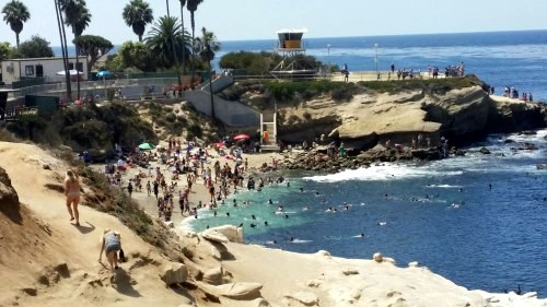 View of La Jolla Cove from Coast Blvd, July 2015. One of the top places on the mainland for snorkeling. Darryl Kimball photo.