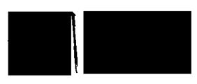 logo_transparent_side-blk.png