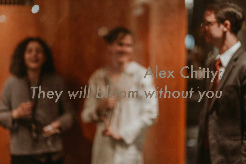 Alex Chitty - Elmhurst Art Museum-99.jpg