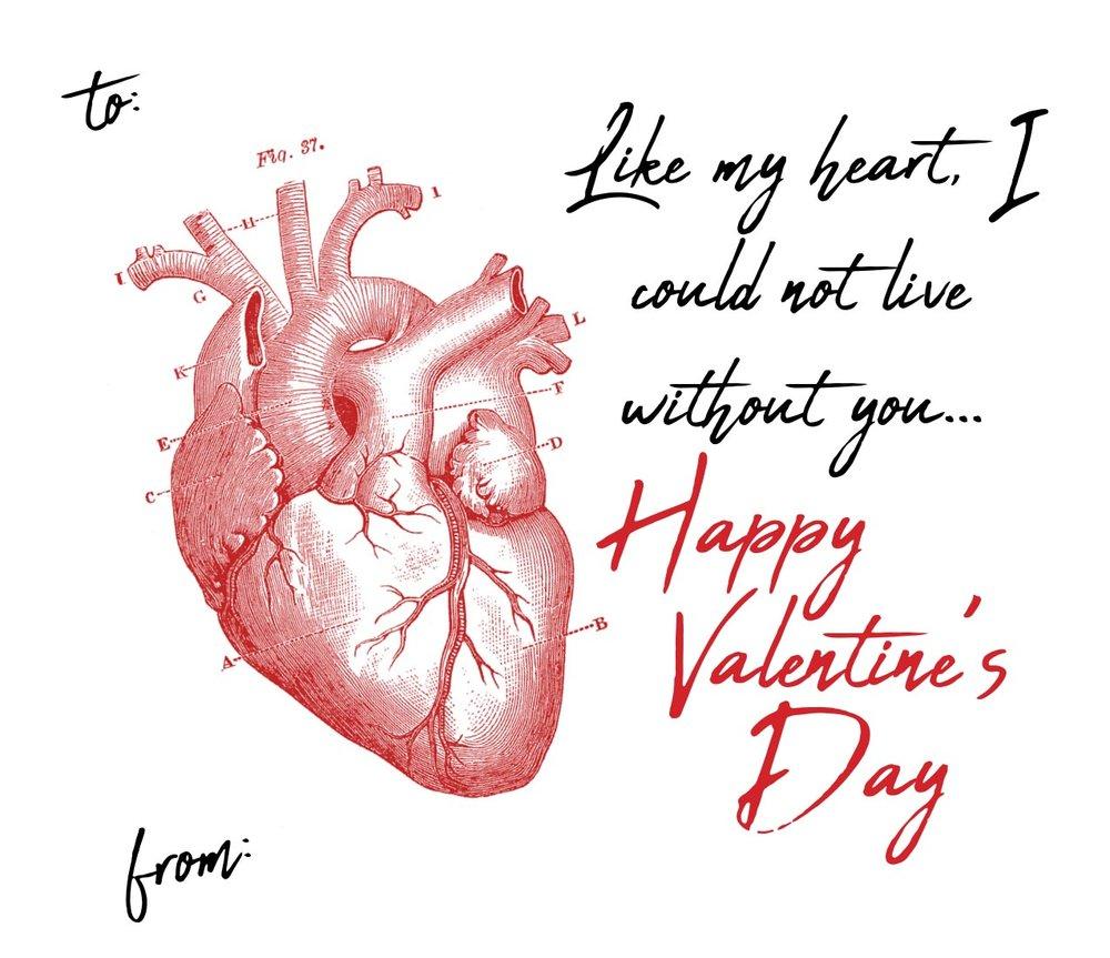 Real heart Val 6.jpg