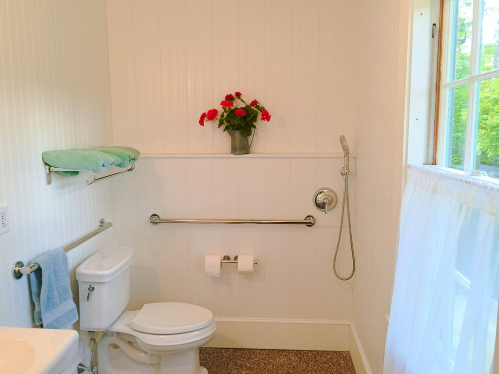 ADA-compliant Bathroom with curbless shower