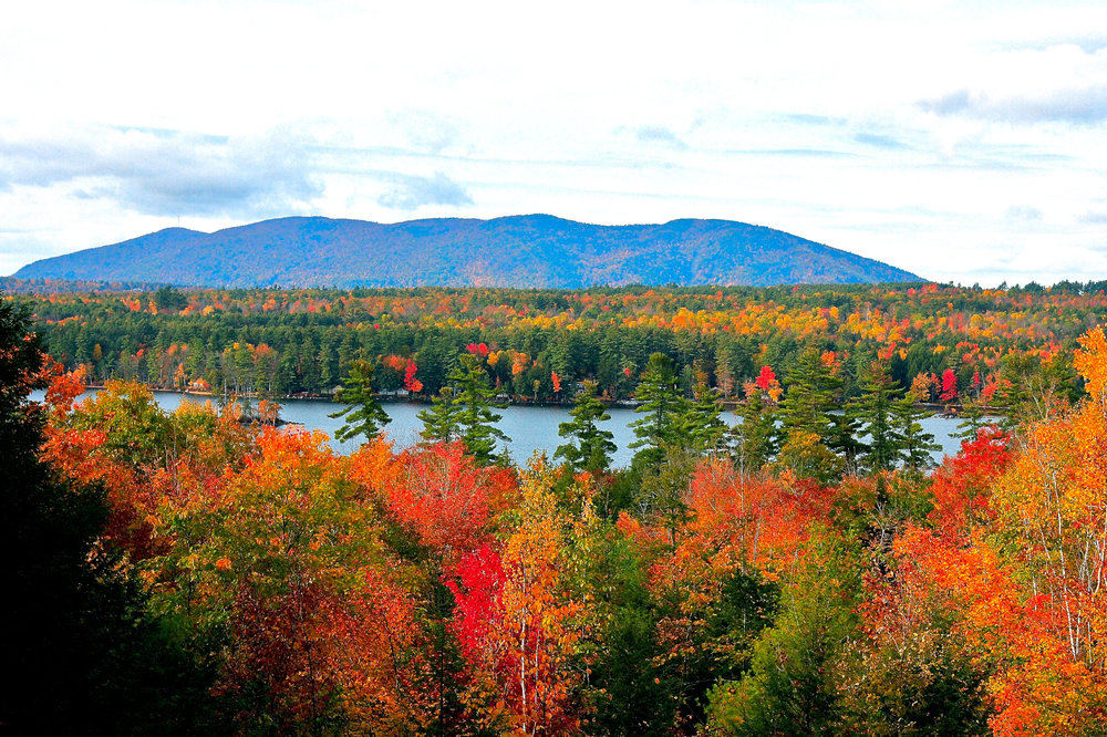 Fall Foliage View 4x6-2500 (1 of 1).jpg