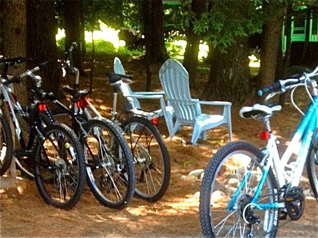 Bikes & Rack-web.jpg