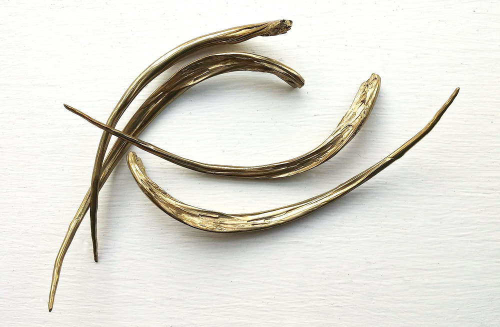 Original shape of the Striped Bass Fishbones