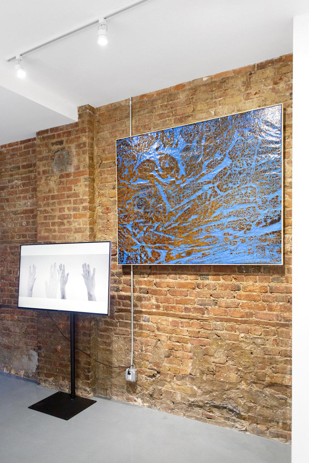 Installation View, Tony Orrico, Aaron Kary, 2018