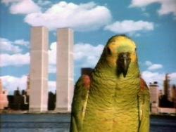 - Robert Wilson, Video 50,1978, 51:40 min, color, sound