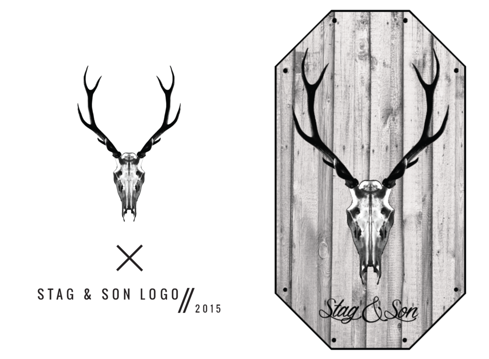 WEB LOGOS - STAG & SON.png