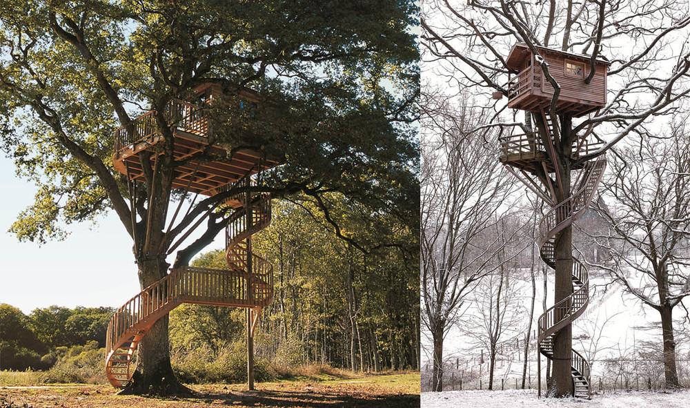 treeroom3.jpg