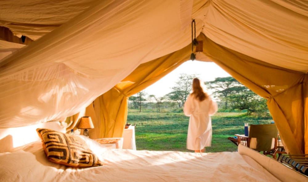 tent13.jpg