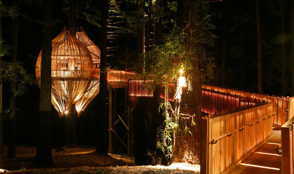 treerestaurant2.jpg