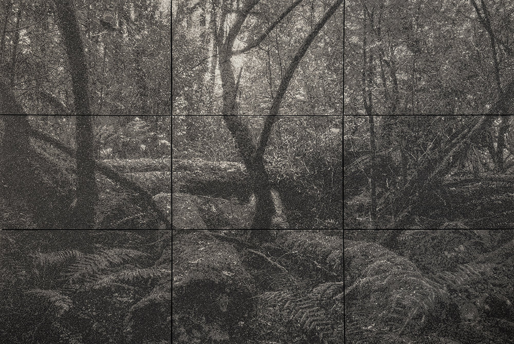 Forest Body.jpg
