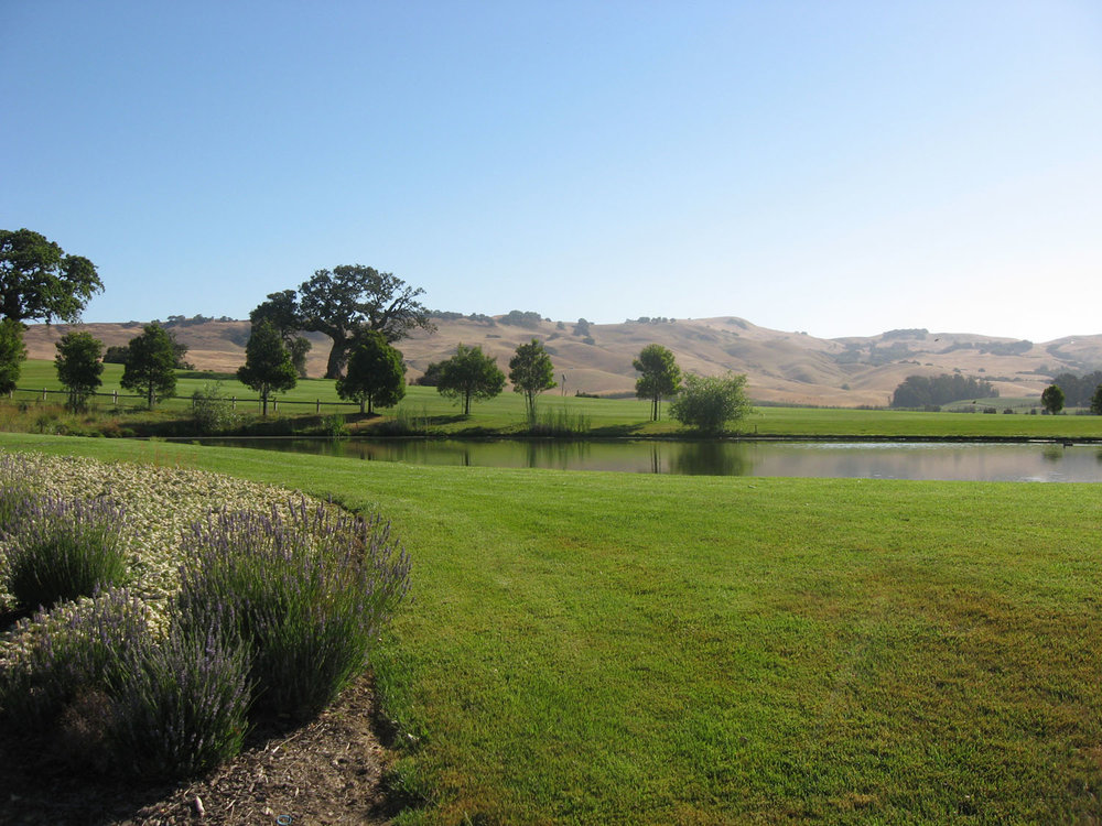 Eagle Vines Golf Course | Napa, California
