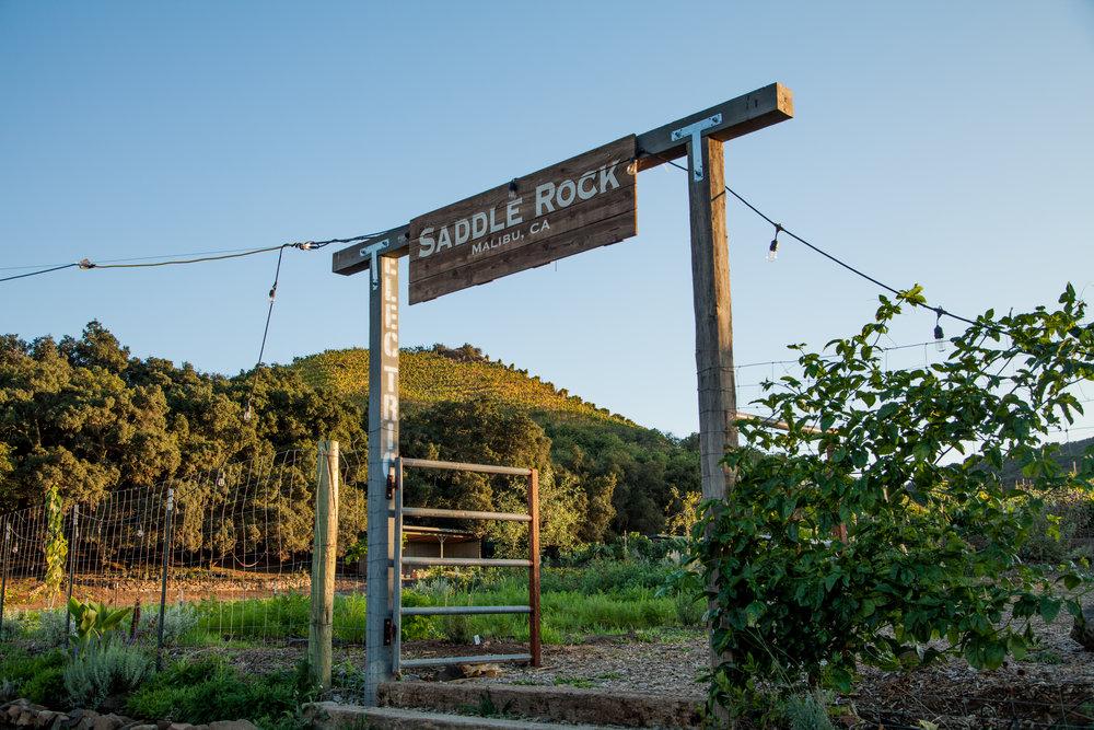 Saddlerock Soho Dinner-202.jpg