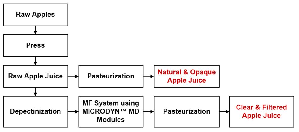 Figure 1. General Process of apple juice clarification.