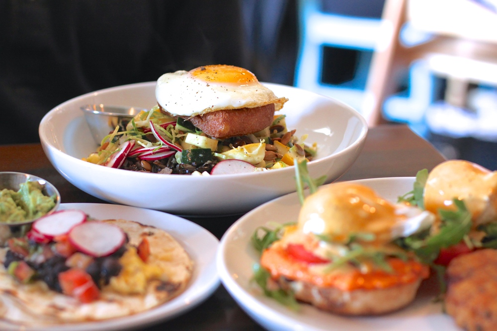 Brunch spread at Bite Cafe (left to right: breakfast taco, bibimbap, pimento cheese eggs Benedict)