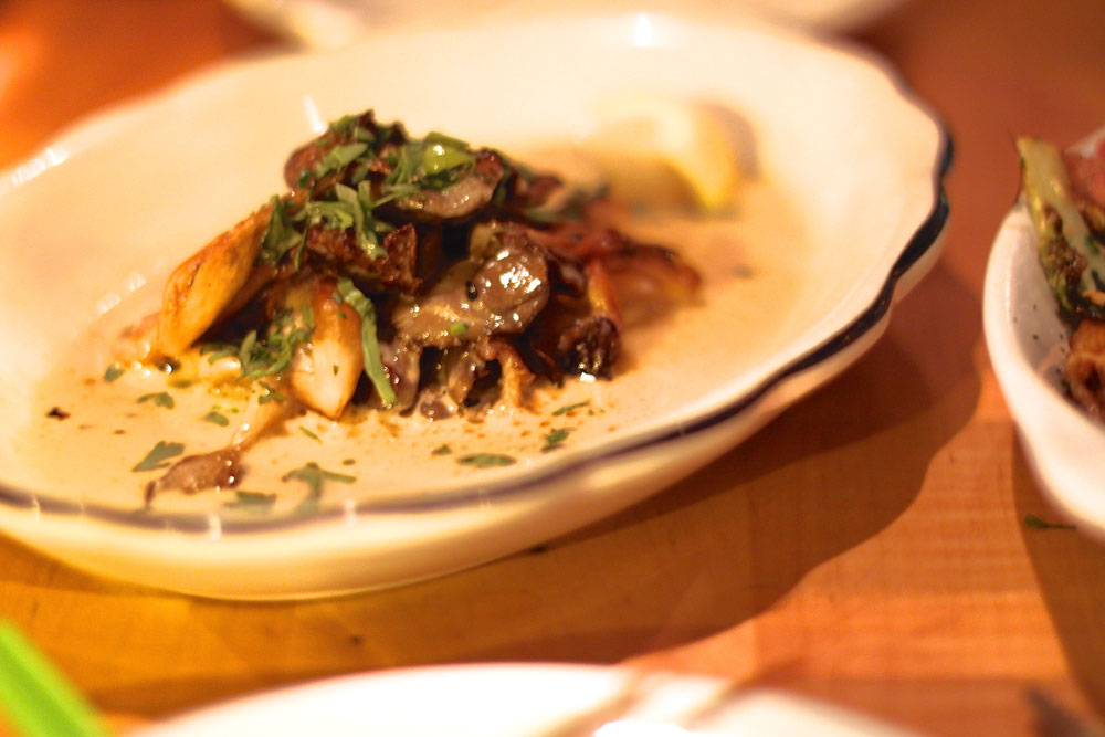 Oyster Mushrooms at Mott Street