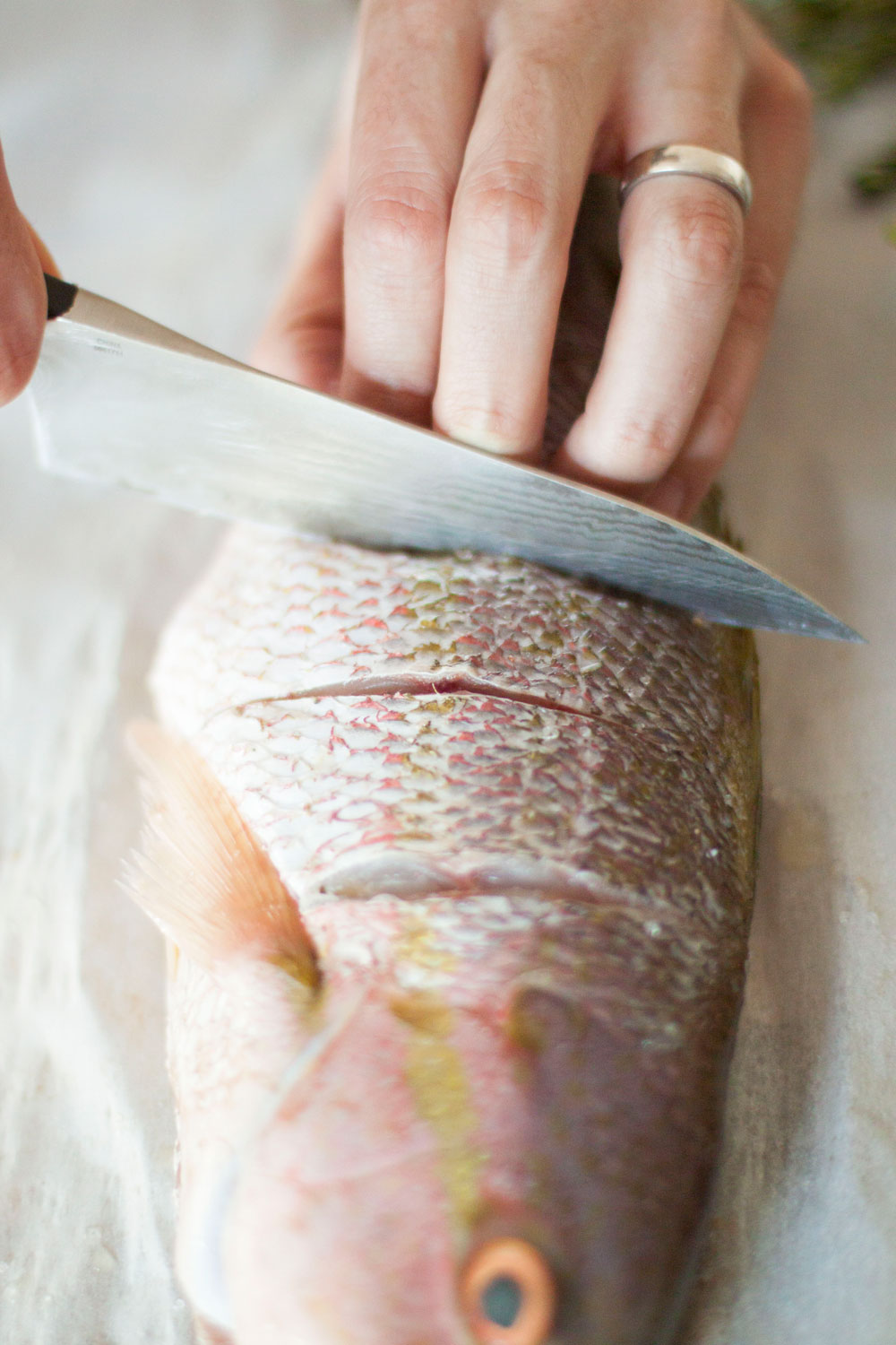 Whole-Snapper-Cut-3.jpg