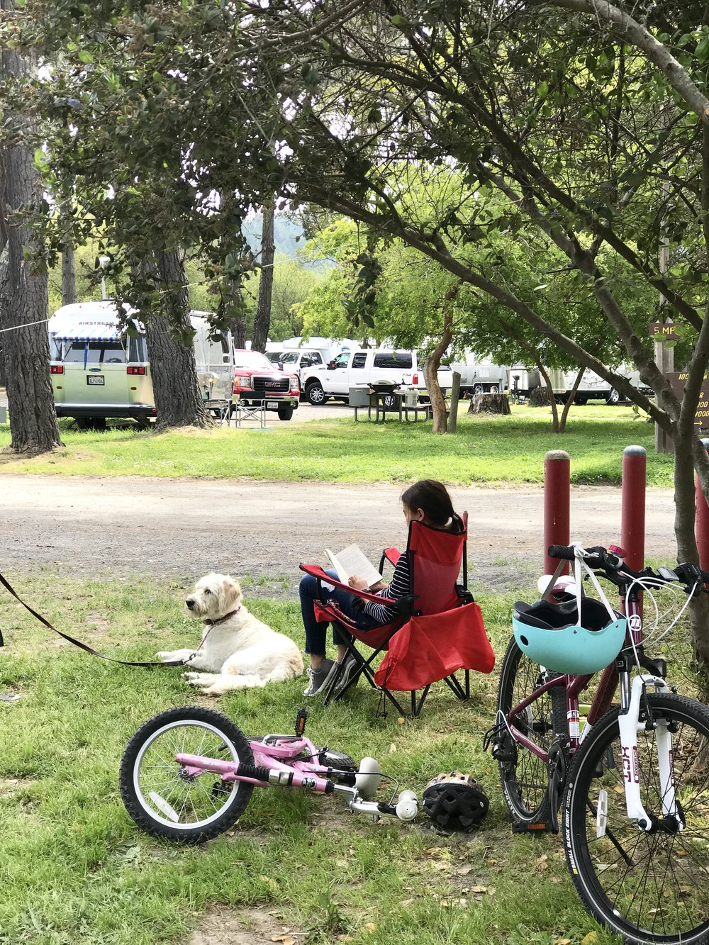 momlikethat - olema campground reading.jpg