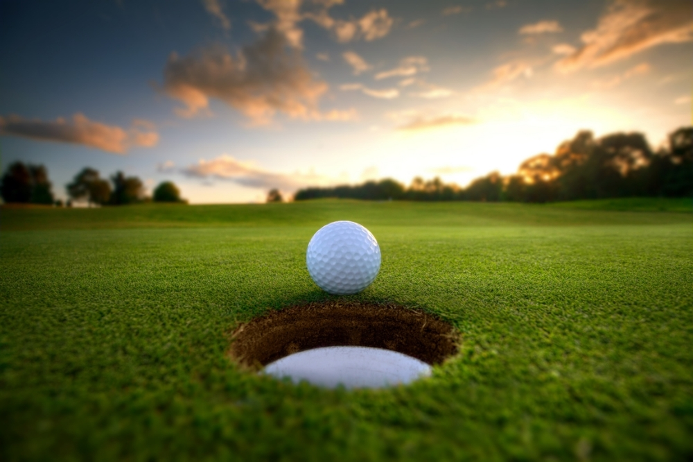 Annual Golf Tournament    Join us at the Meadows Golf and Country Club on Wednesday, August 15, 2018 for our 26th Annual Fundraiser.    Register Here