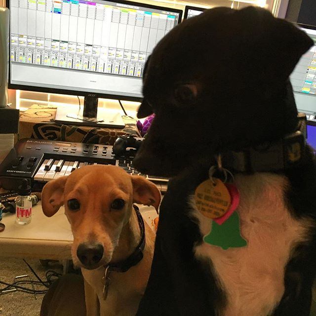Studio pals.