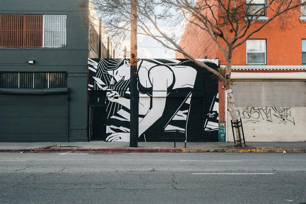 Tommii Lim_LA Is trying to kill me mural 02_72.jpg